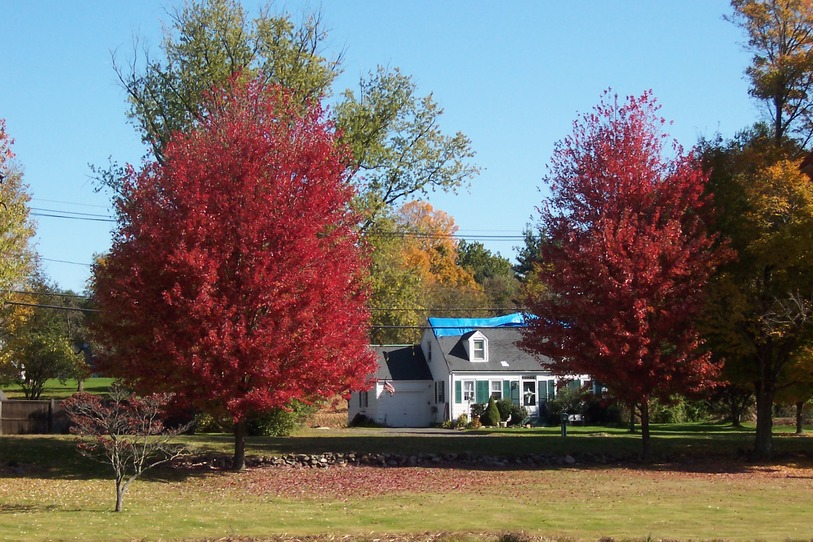 Newtown, CT: Autumn 2009
