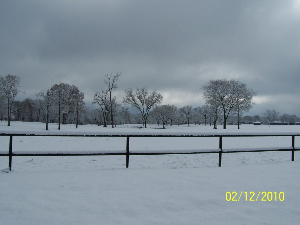 Jacksonville, TX : snow covered field