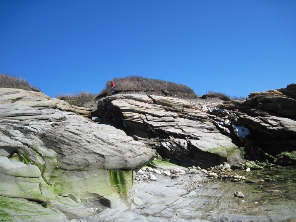 Jamestown, RI : A Rocky intertidal beach at Beavertail park