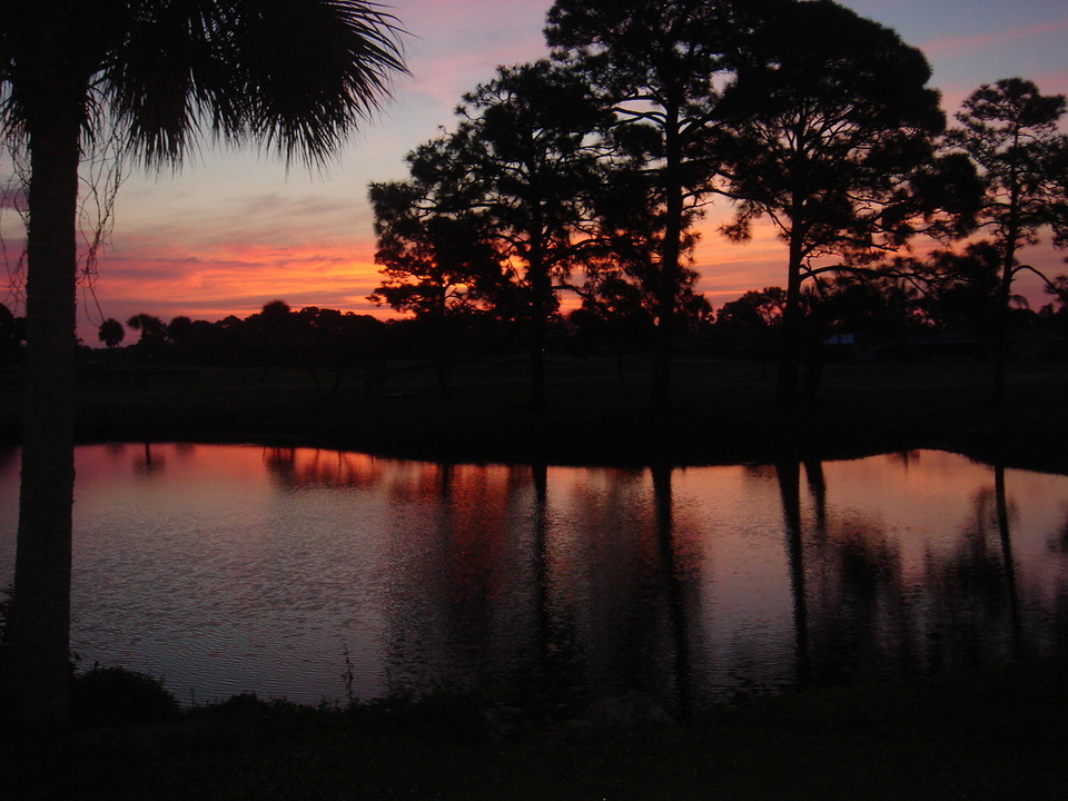 Englewood, FL : This sunrise was taken in our backyard on the Hills Golf Course