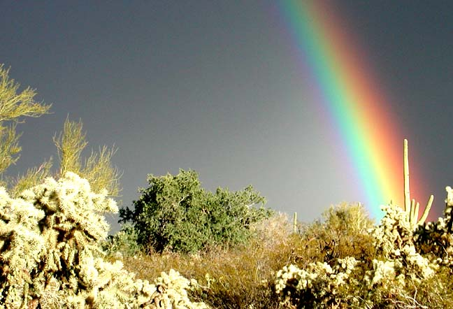 Picture Rocks, AZ: Rainbow over Picture Rocks
