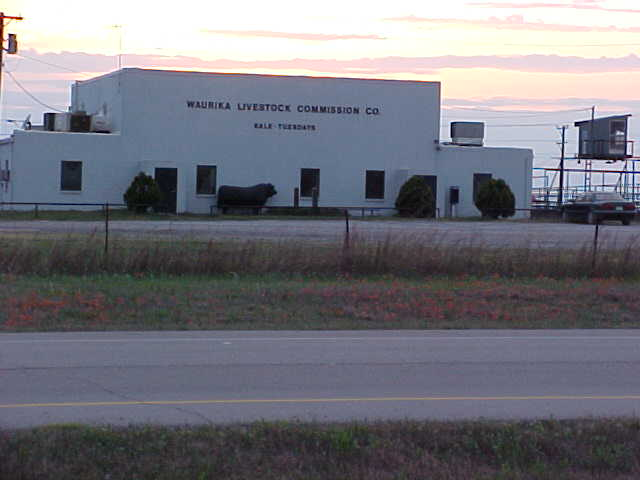 Waurika, OK : Waurika Livestock Commission building