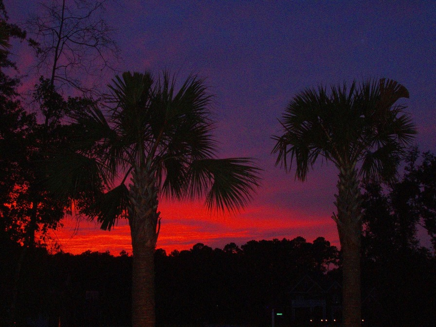Florence, SC : Colorful Palmetto Sunset - Florence, SC.