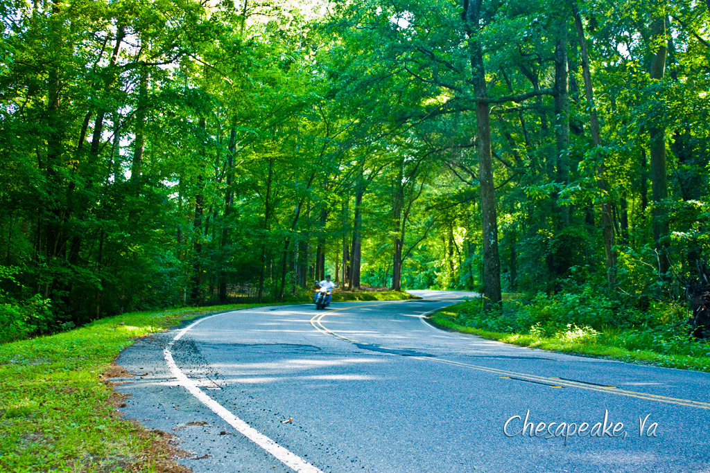Chesapeake, VA: The backroads of Chesapeake, are a hidden gem.