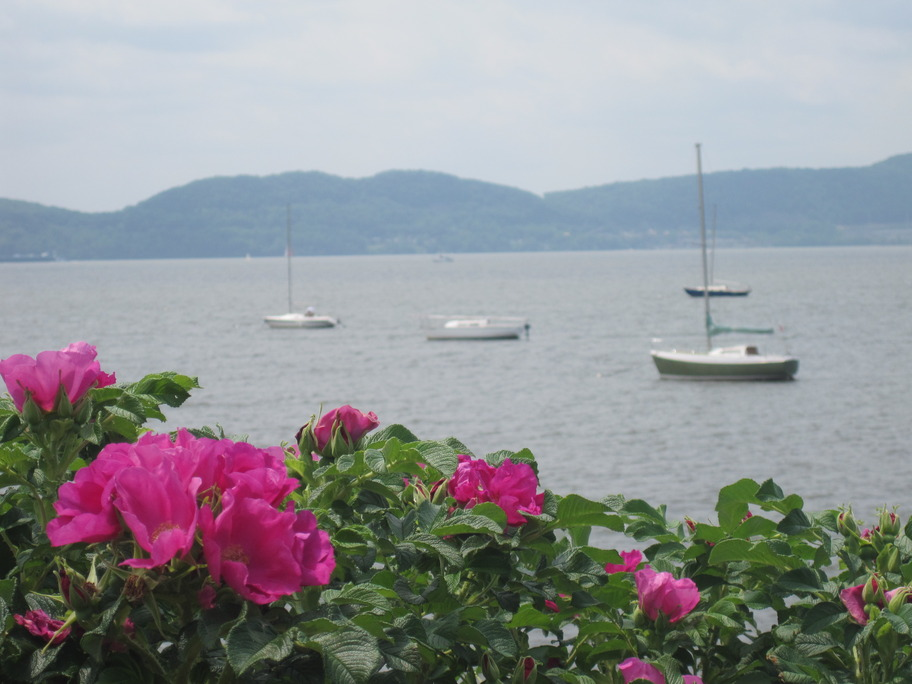 Croton-on-Hudson, NY: View of the Hudson from Senasqua