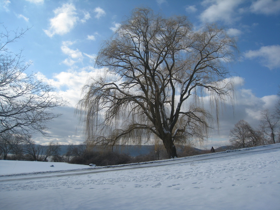 Croton-on-Hudson, NY : Croton Point Park in the Winter