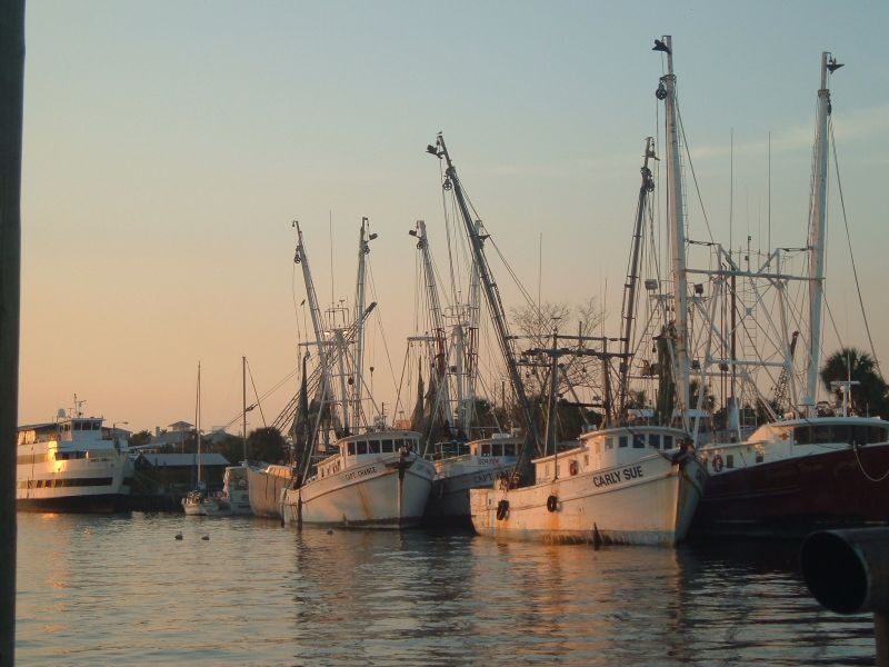 Tarpon Springs, FL : At the sponge docks
