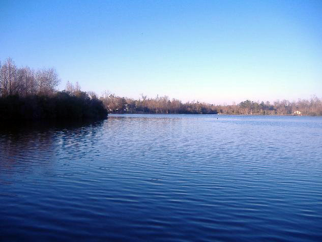 Goose Creek, SC : The Crowfield Lake in Goose Creek.