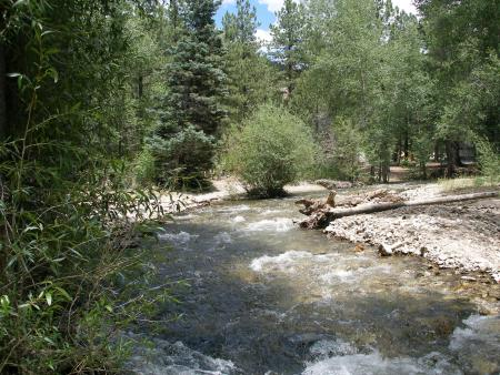 Red River, NM : Near-by river scene