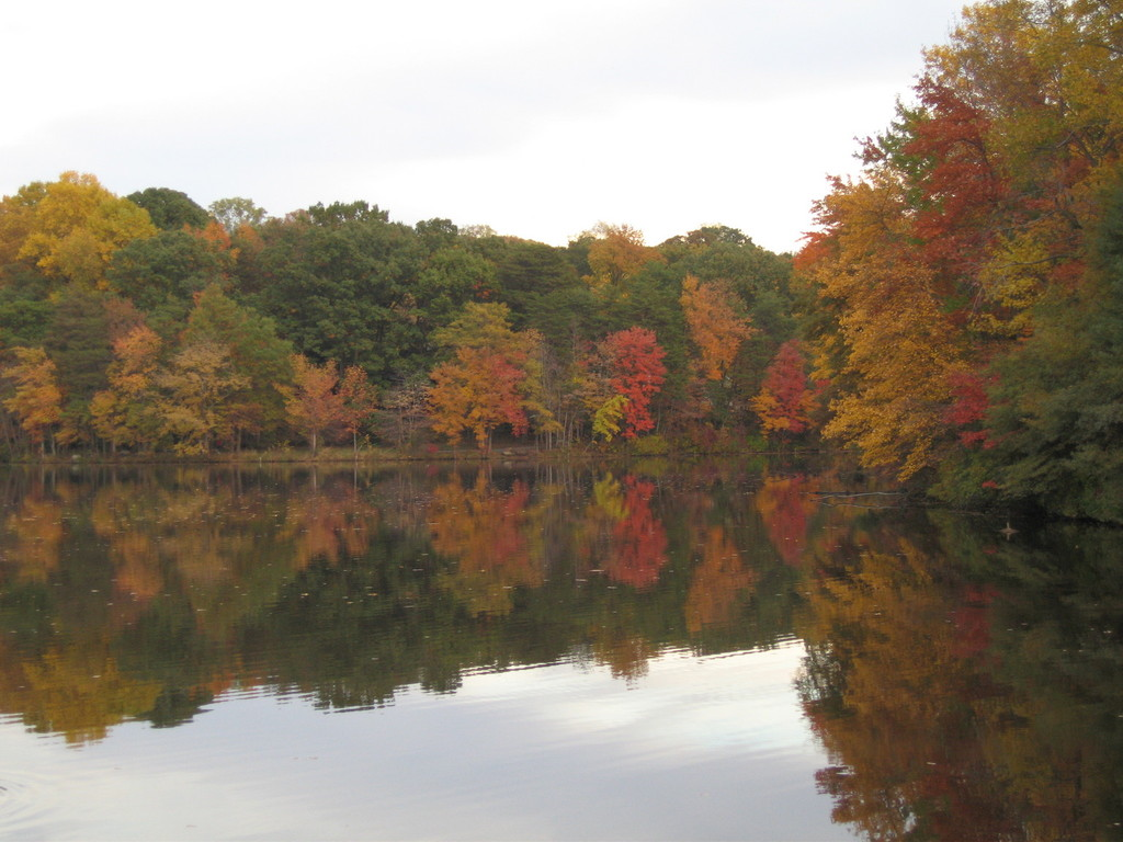 Greenbelt, MD : Greenbelt lake during the fall season