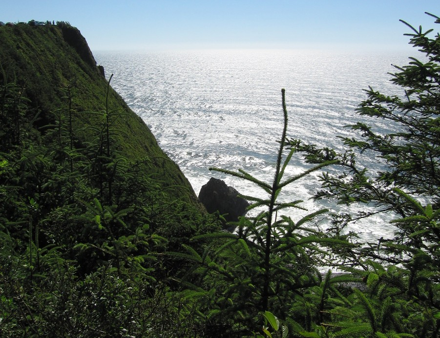 Florence, OR : Cliffs over the Pacific...