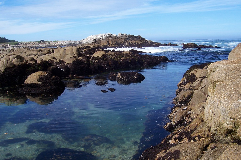 Monterey, CA : Seashore of Monterey, CA