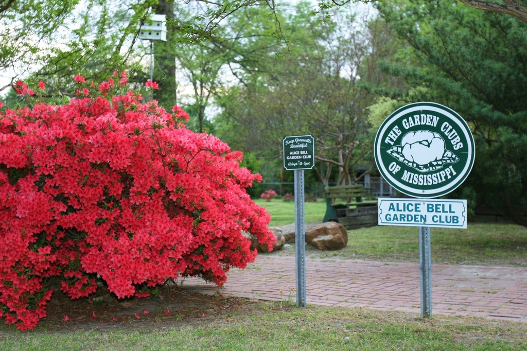 Greenville, MS : Fanny Arnold Park