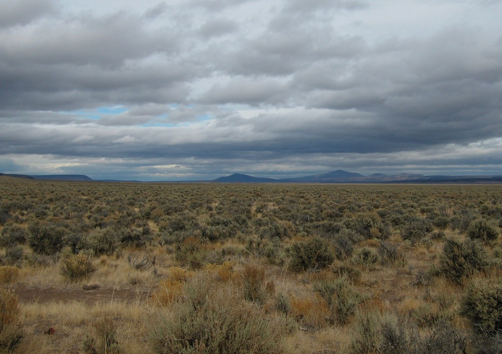 Winnemucca, NV : The Big EmptySagebrush Heaven