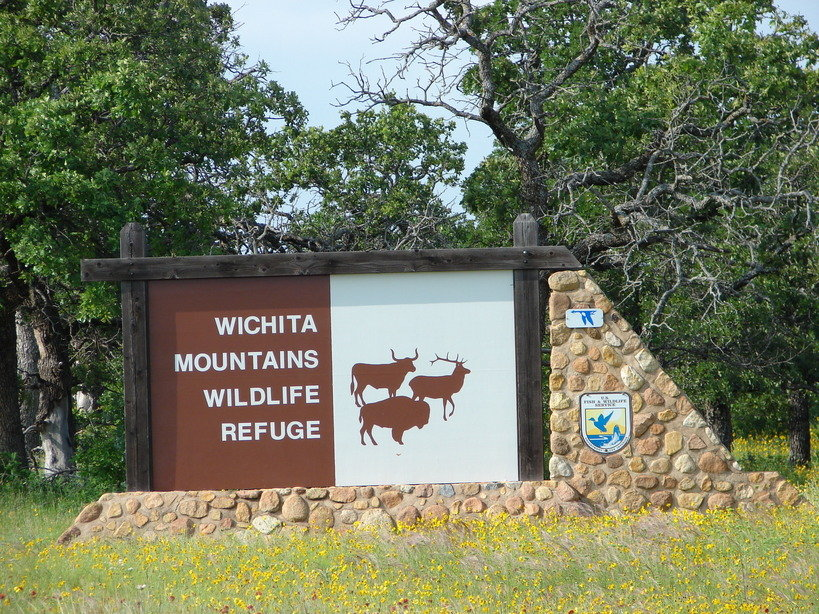 Lawton, OK : Wichita Mountains Wildlife Refuge