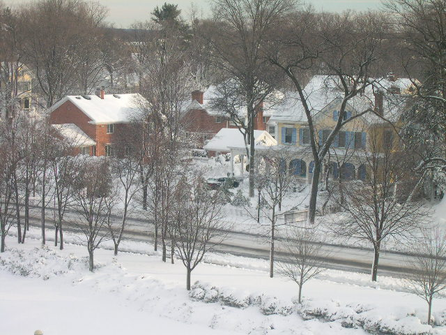 Garden City, NY : Winter 2005
