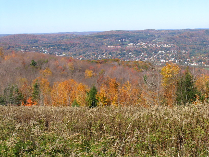 Oneonta, NY : Looking over Oneonta and the Susquehanna valley from Franklin Mt.