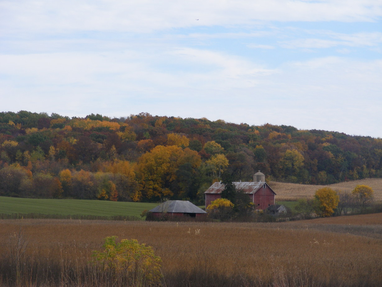 Cross Plains, WI: Farm in Cross Plains in Fall