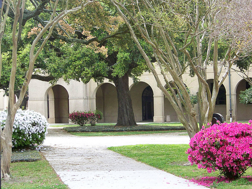 Baton Rouge, LA : Courtyard at LSU