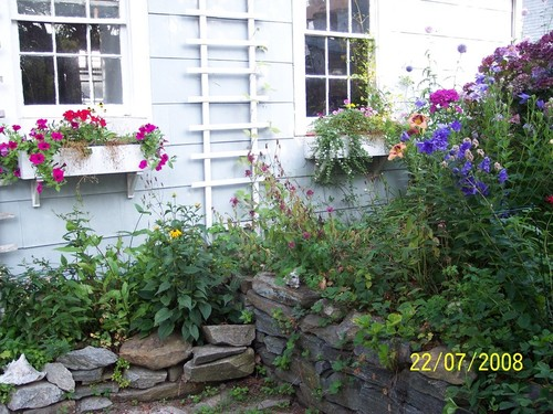 East Lyme, CT : Summer garden