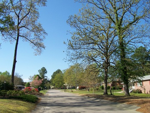 West Columbia, SC: Springtime blossoms in vibrant color in West Columbia, South Carolina, north of Sunset Boulevard.