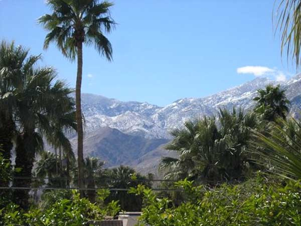 Palm Springs, CA : Mountains turned gree from rain