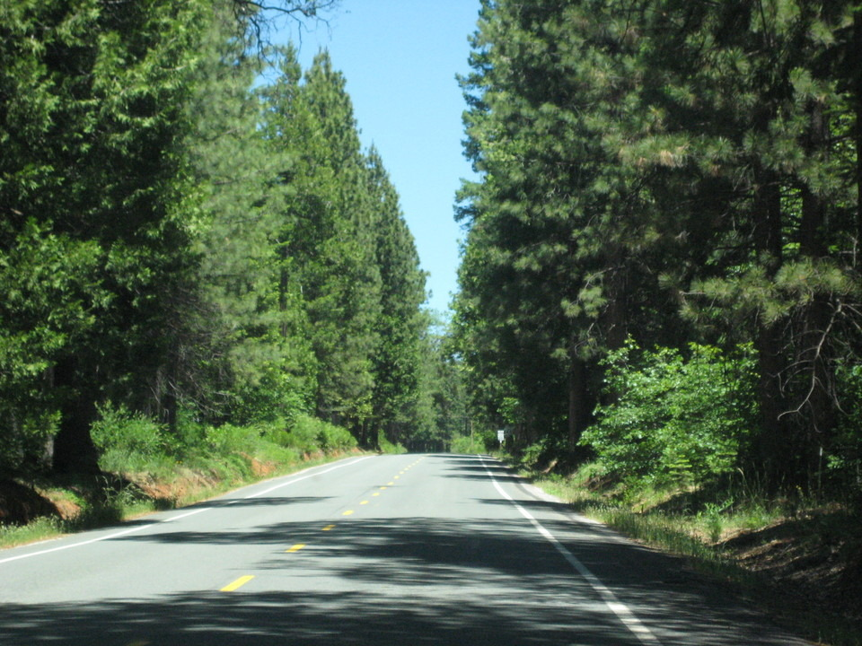 Foresthill, CA : driving down the road