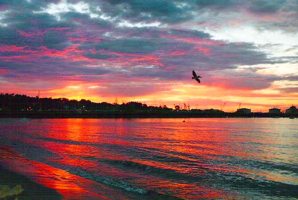 Monterey, CA : Monterey Bay - Fisherman Wharf Sunset
