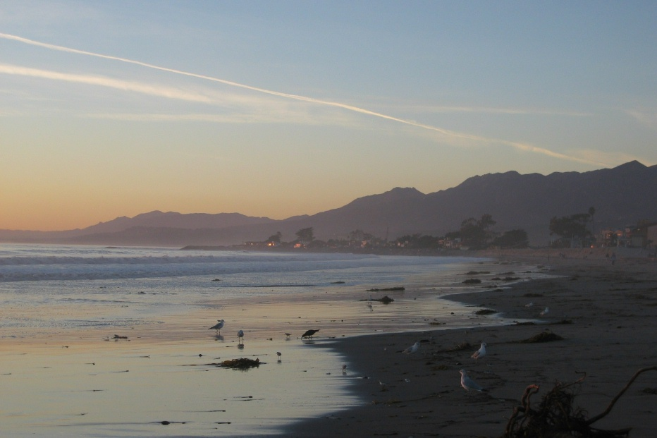 Carpinteria, CA : carp beach