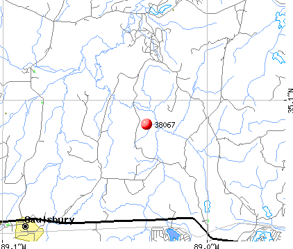 Saulsbury, TN (38067) map