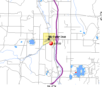 Wolverine, MI (49799) map