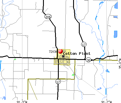 Cotton Plant, AR (72036) map