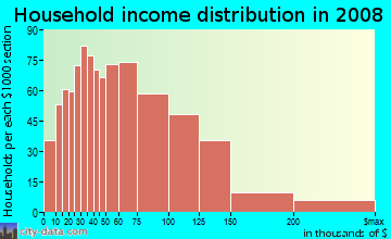 Household income distribution in 2009 in Fords in Edison neighborhood in NJ