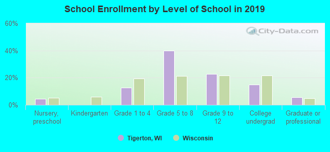 School Enrollment by Level of School in 2019