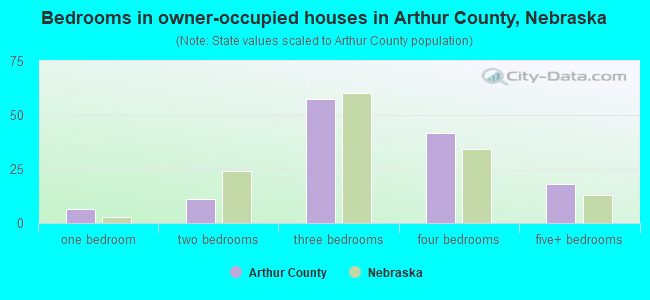 Bedrooms in owner-occupied houses in Arthur County, Nebraska