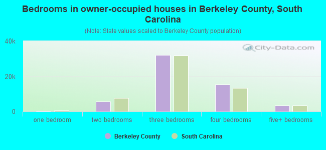 Bedrooms in owner-occupied houses in Berkeley County, South Carolina