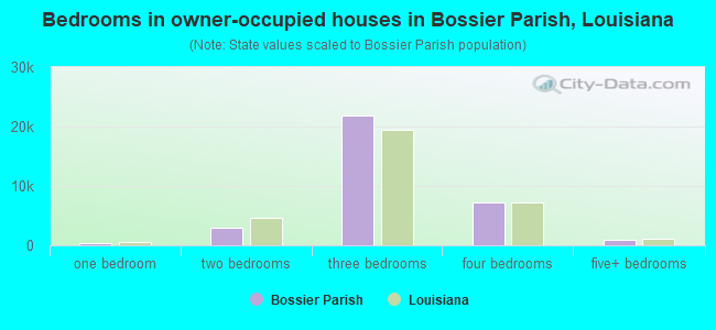 Bedrooms in owner-occupied houses in Bossier Parish, Louisiana