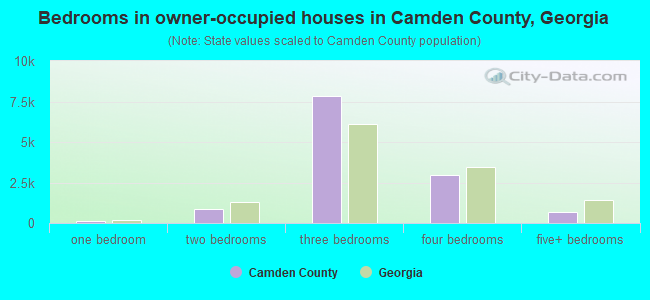 Bedrooms in owner-occupied houses in Camden County, Georgia
