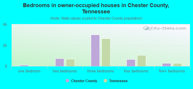 Bedrooms in owner-occupied houses in Chester County, Tennessee