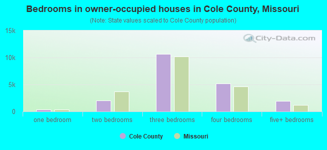 Bedrooms in owner-occupied houses in Cole County, Missouri