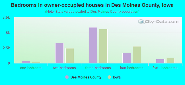 Bedrooms in owner-occupied houses in Des Moines County, Iowa