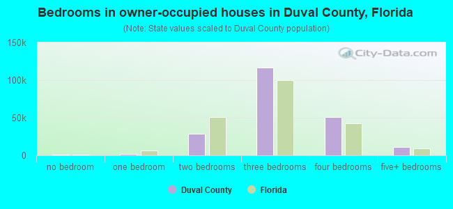 Bedrooms in owner-occupied houses in Duval County, Florida