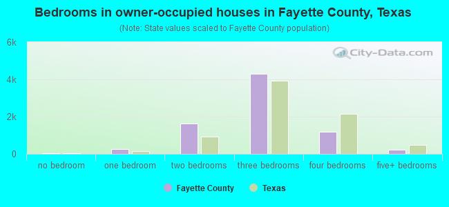Bedrooms in owner-occupied houses in Fayette County, Texas