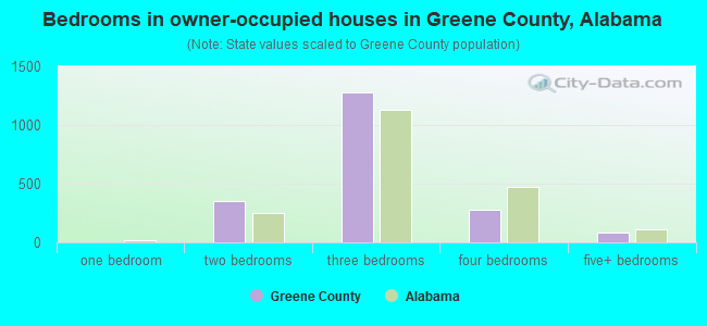 Bedrooms in owner-occupied houses in Greene County, Alabama