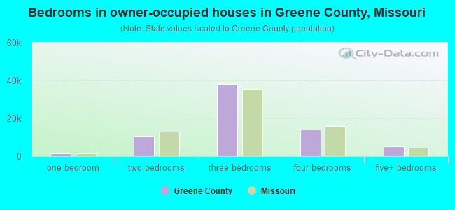Bedrooms in owner-occupied houses in Greene County, Missouri