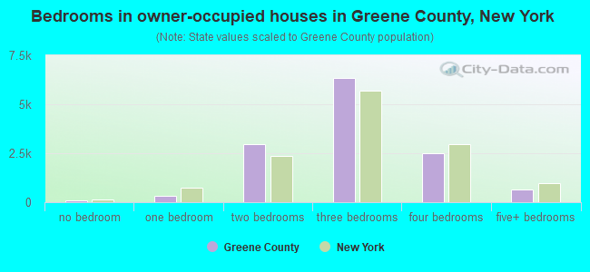 Bedrooms in owner-occupied houses in Greene County, New York