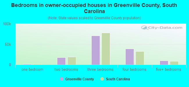 Bedrooms in owner-occupied houses in Greenville County, South Carolina