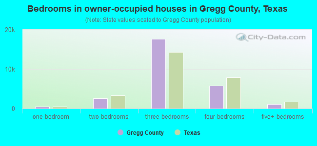 Bedrooms in owner-occupied houses in Gregg County, Texas