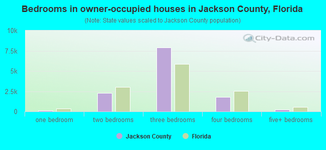Bedrooms in owner-occupied houses in Jackson County, Florida