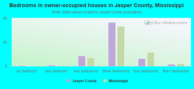 Bedrooms in owner-occupied houses in Jasper County, Mississippi